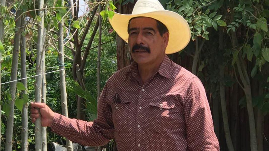 Reaparece defensor del mezquite como aspirante a la Alcaldía